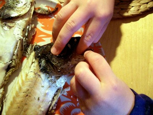 Nicofish